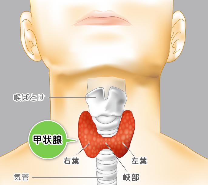 痛い 喉 の 左側 が